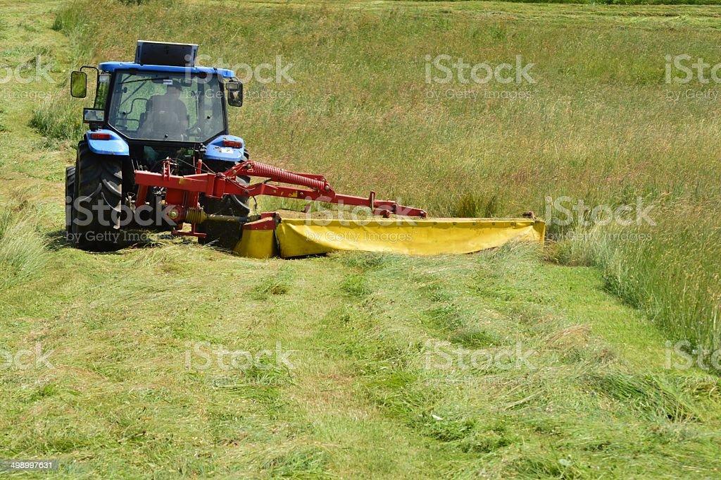 farmwork stock photo
