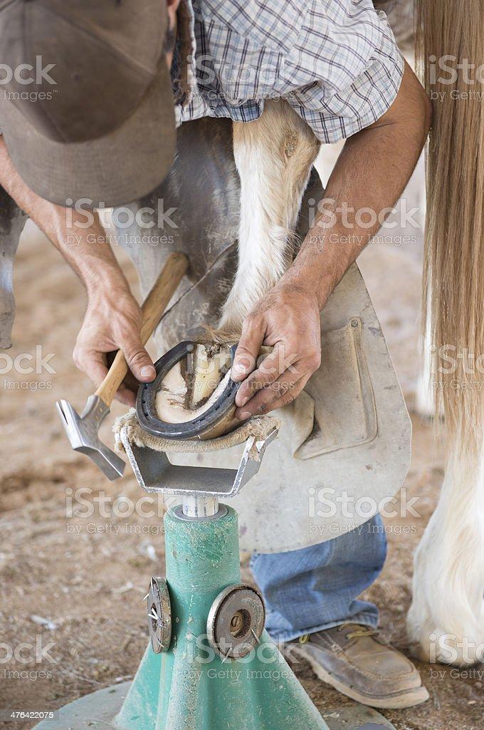 Farrier Fitting horseshoe royalty-free stock photo