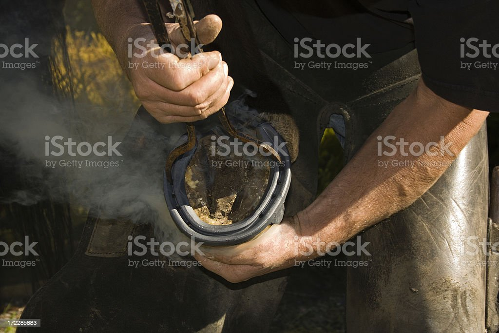 Farrier Hot Shoeing stock photo