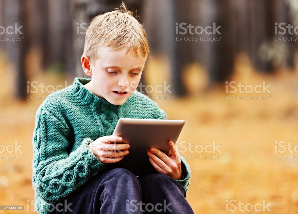 Fascinated little boy studies screen of tablet-style pc stock photo