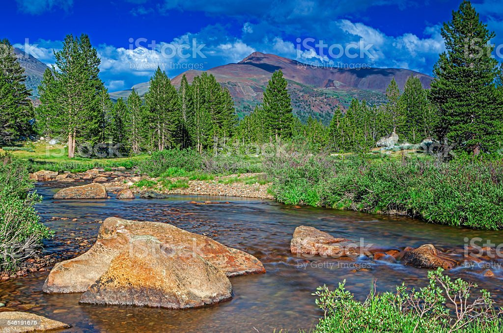 Fascinating View of Water Streams In Unique Yosemite National Park stock photo