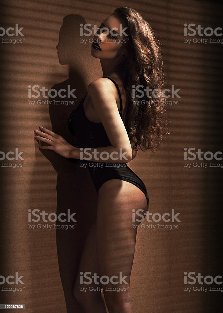 Fashion attractive brunette in sexy underwear royalty-free stock photo