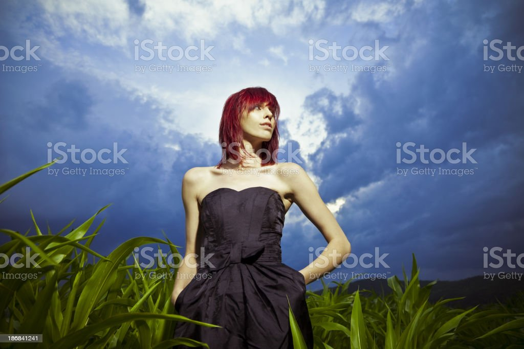 Fashion model in the field royalty-free stock photo