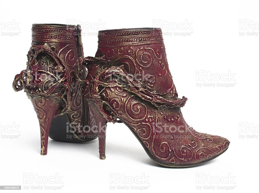 Fashionable Ankle Boots for Women royalty-free stock photo