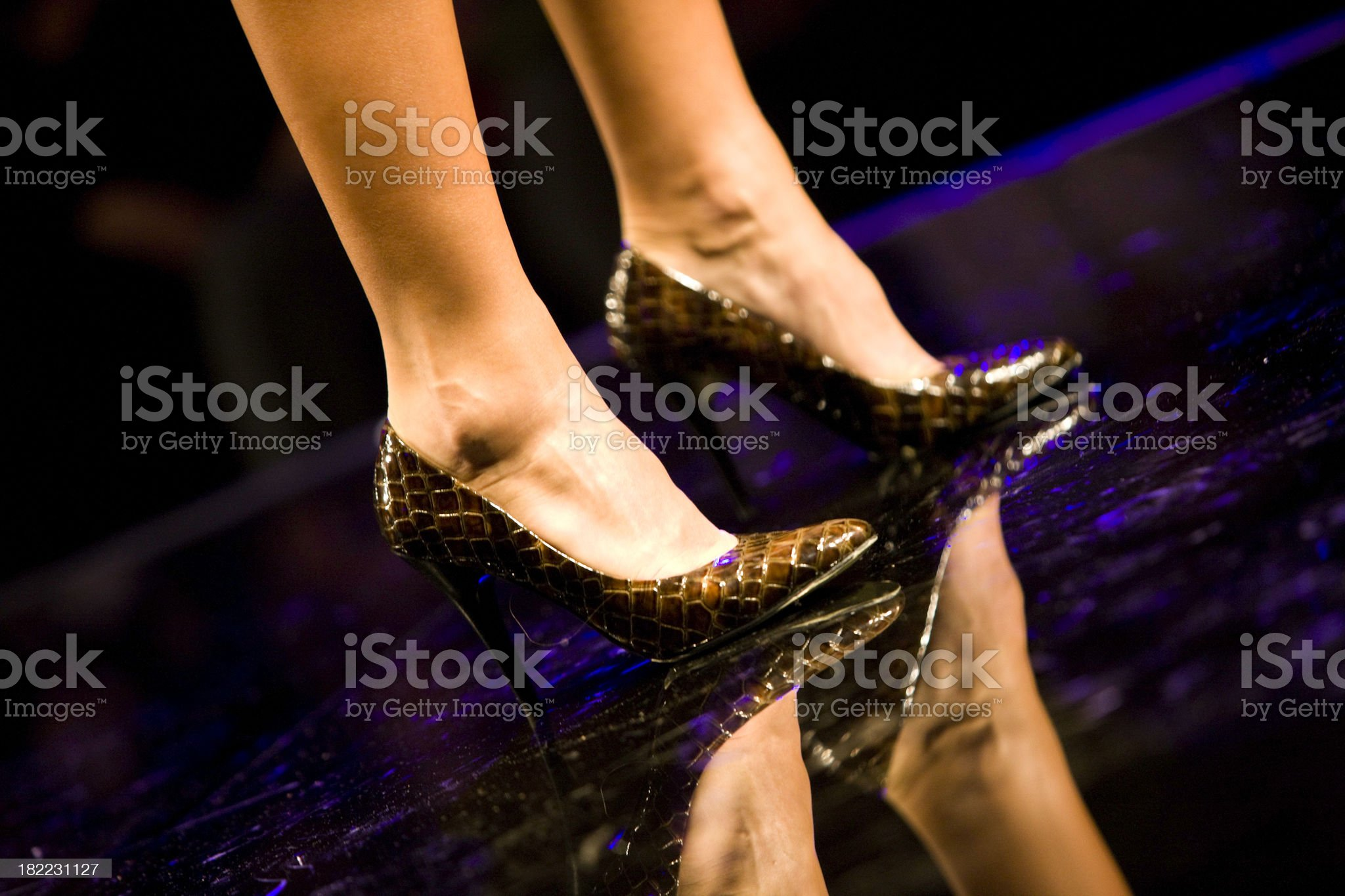 Fashionable shoes royalty-free stock photo