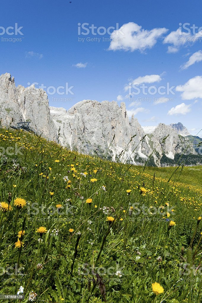 Dolomiti di Fassa royalty-free stock photo