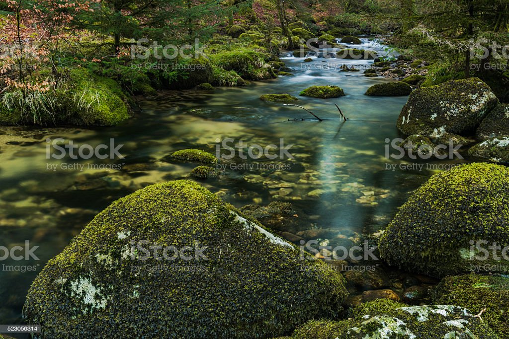 Fast flowing stream in ancient forest stock photo