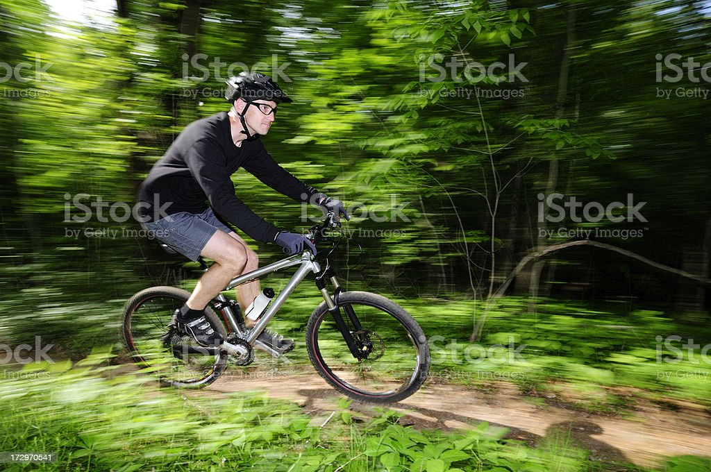 Fast mountain biker in the woods. royalty-free stock photo