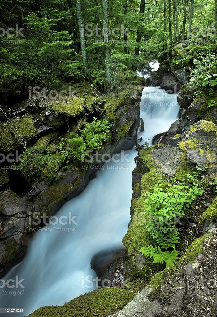 Fast Mountain Stream stock photo