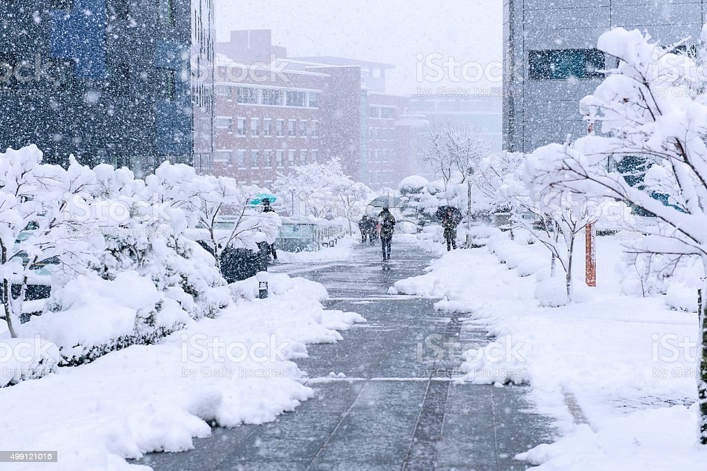fast moving snowstorm arrived in the South Korea stock photo