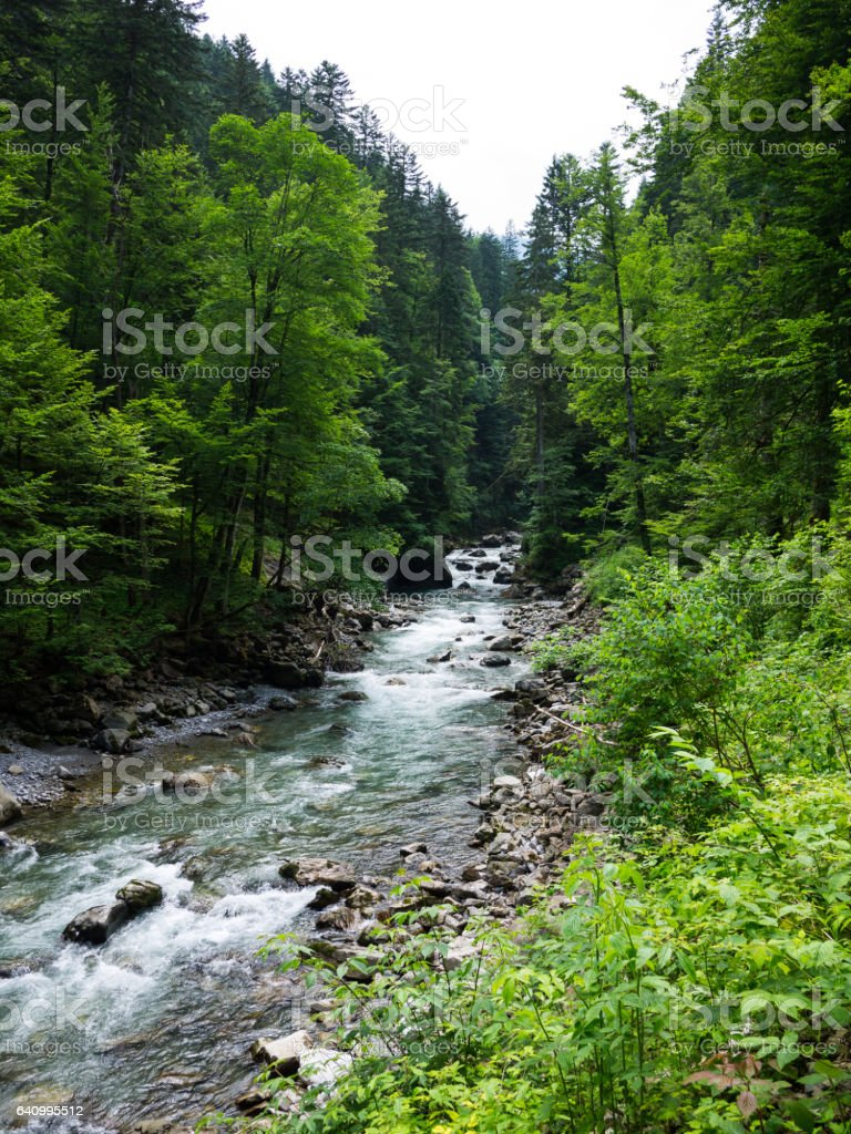 Fast running river in an forest stock photo