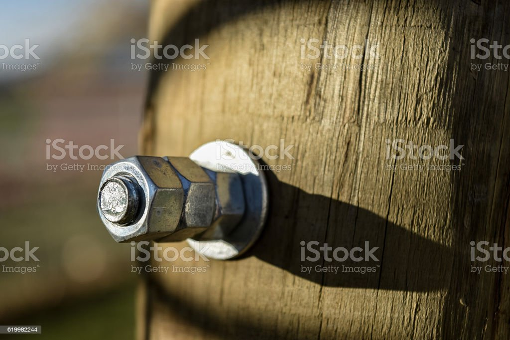 Fastener In Wooden Pole stock photo