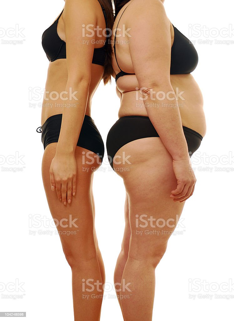 Fat and thin royalty-free stock photo