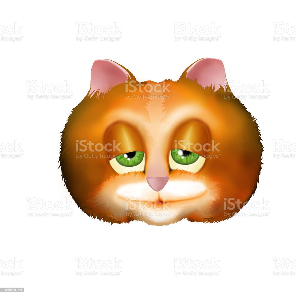 Fat Cat stock photo