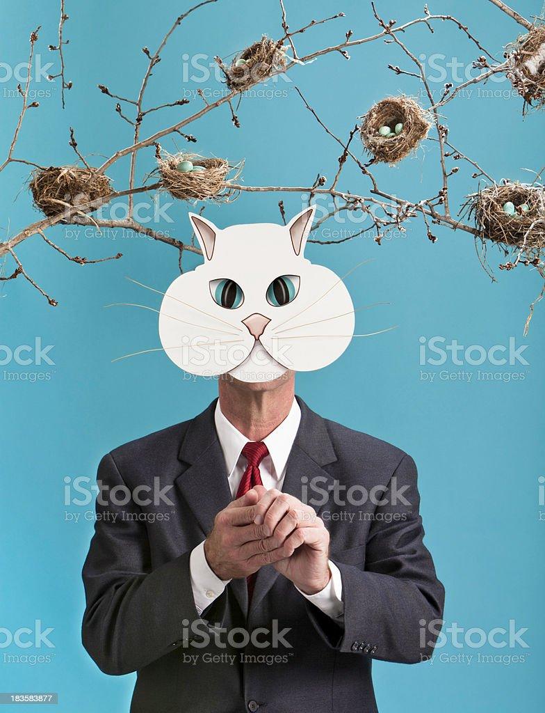 Fat Cat with Many Bird Nests stock photo