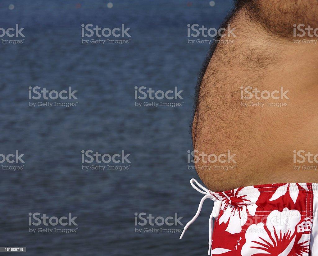 fat royalty-free stock photo