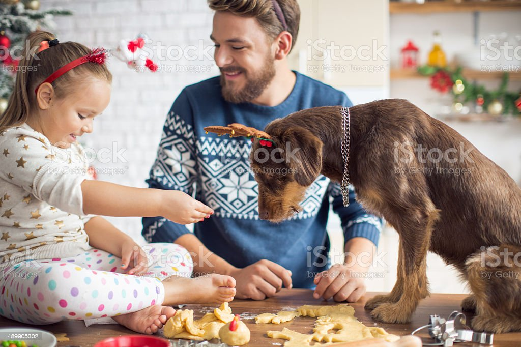 Father and daughter in kitchen for christmas with their dog. stock photo