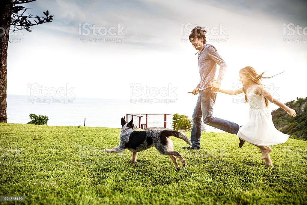 Father and daughter playing with the dog in the backyard stock photo