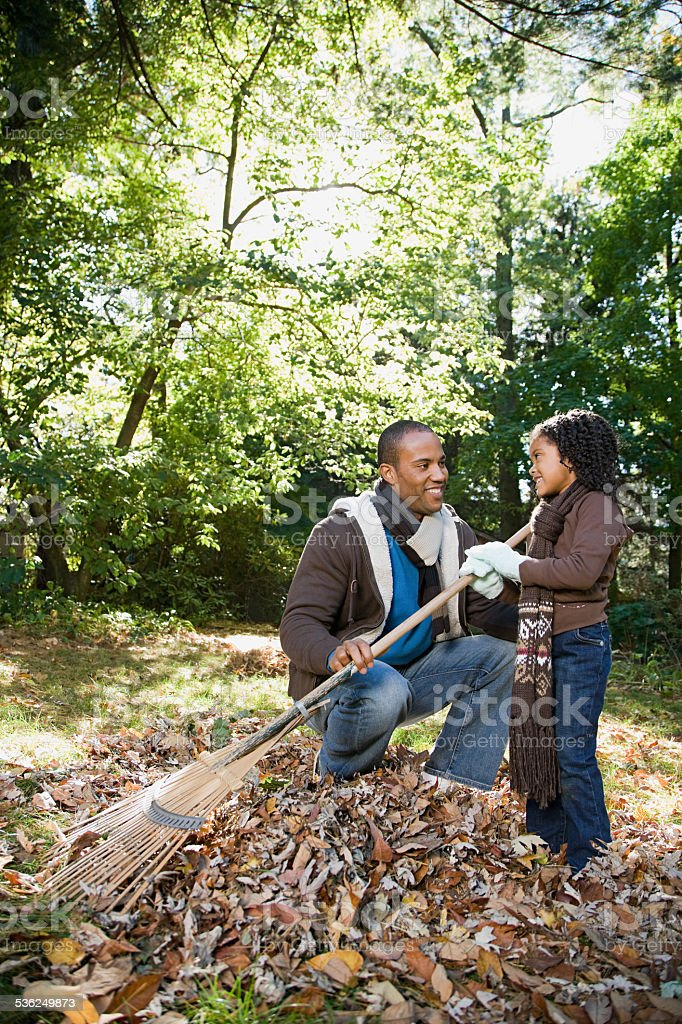 Father and daughter raking leaves stock photo