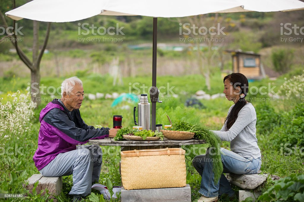 Father and daughter taking a break while farming vegetables stock photo