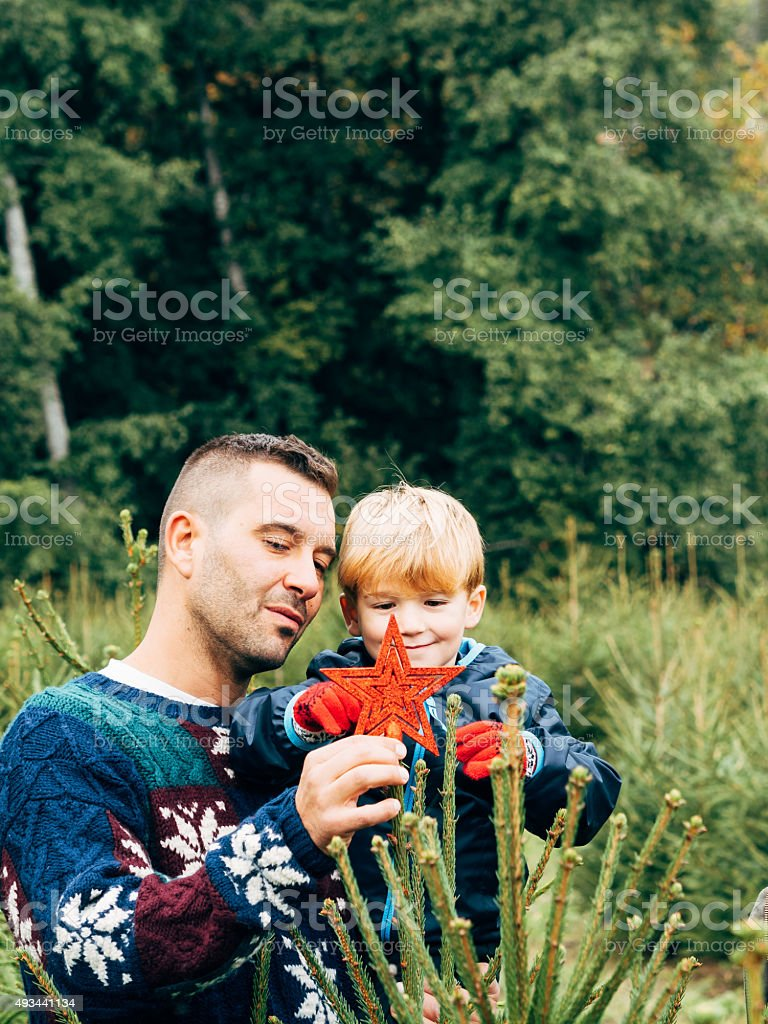 Father And Son Decorating A Christmas Tree stock photo