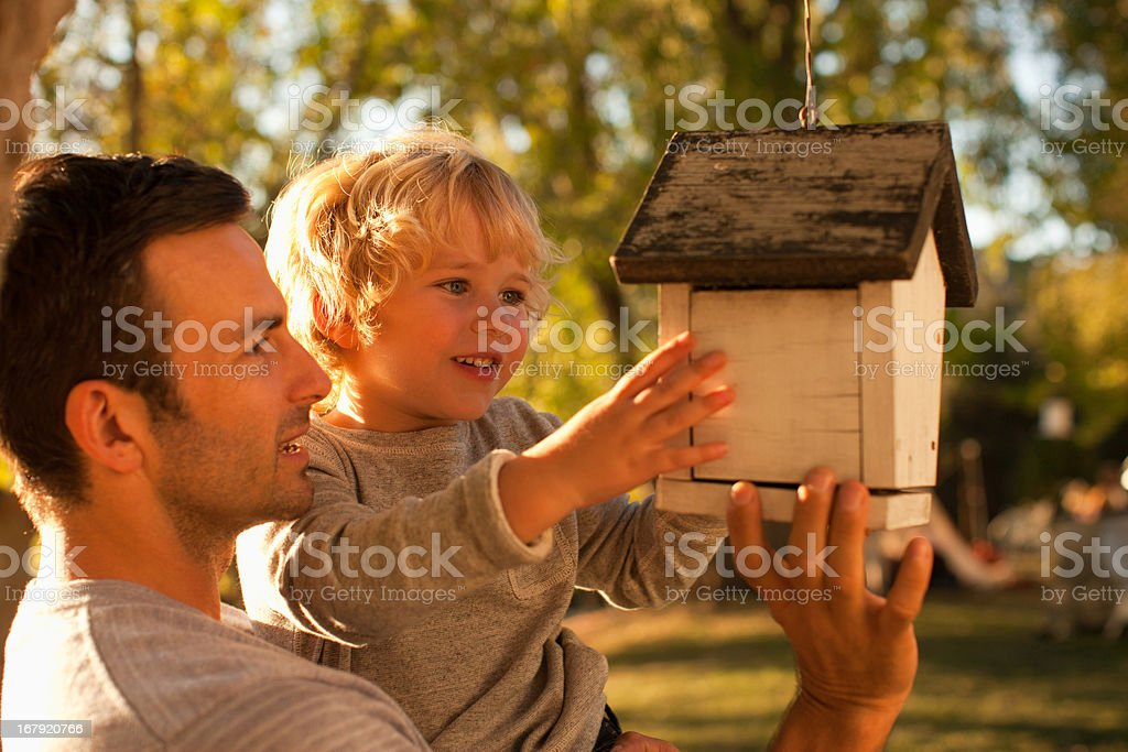 Father and son examining birdhouse stock photo