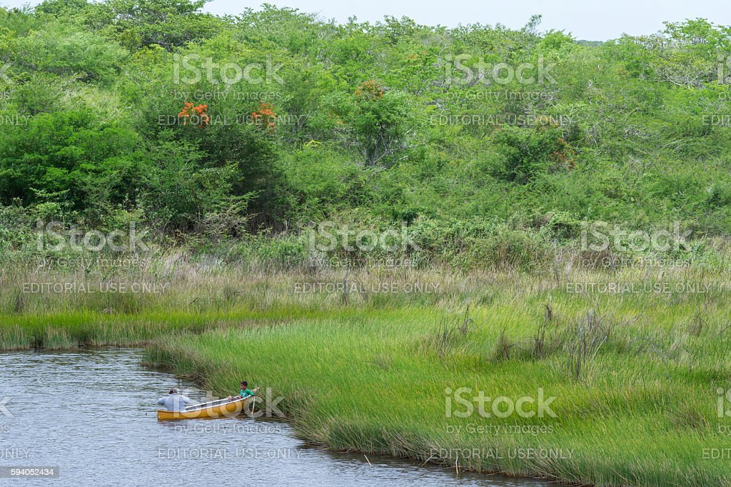 Father and son fishing in tropical savannah swamp stock photo