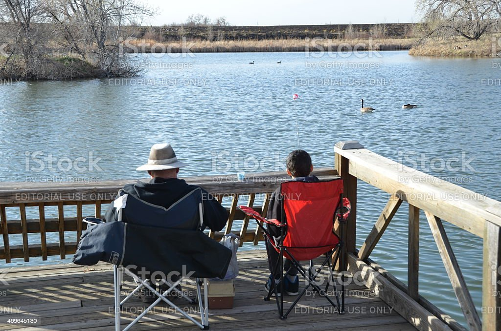 Father and Son fishing while watching the geese stock photo
