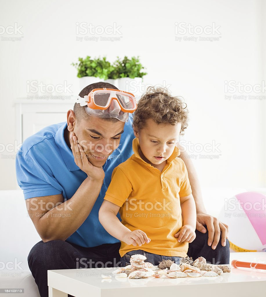 Father and son looking at shells collection. stock photo