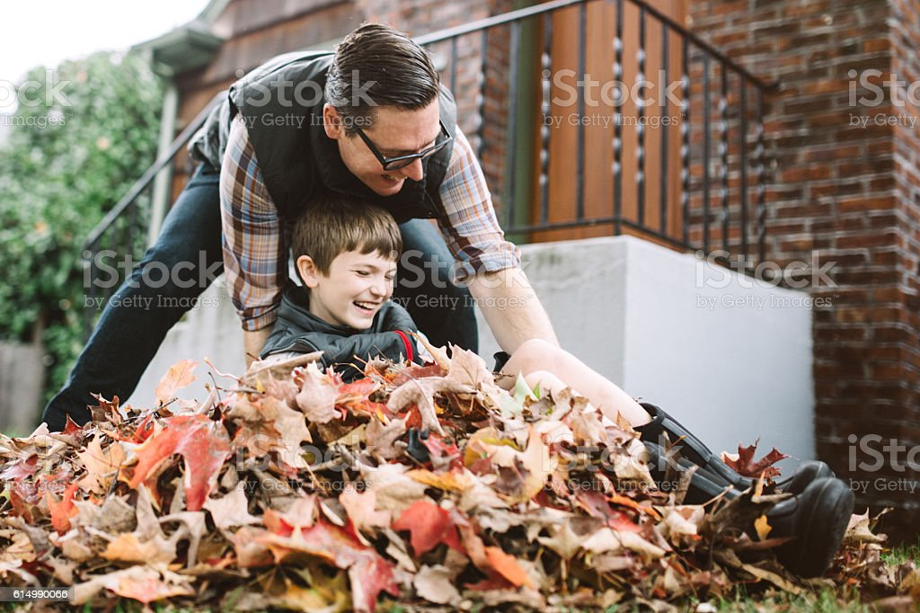 Father and Son Playing in Fall Leaves stock photo