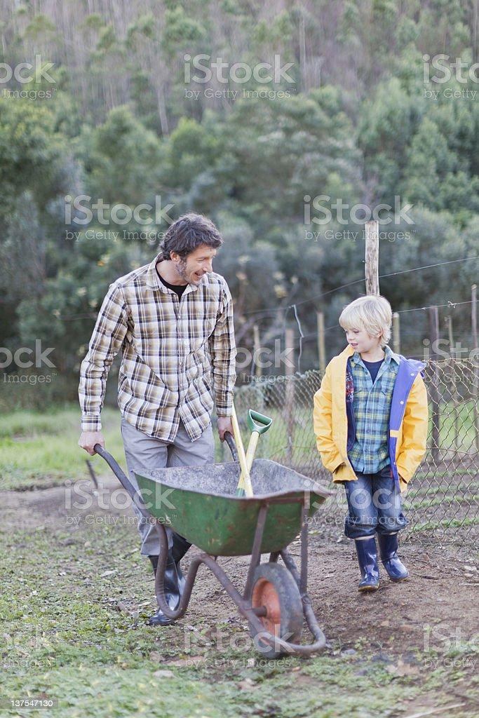 Father and son pushing wheelbarrow stock photo