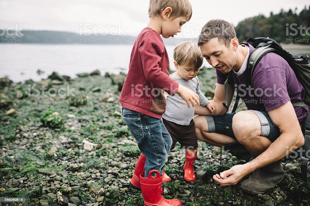 Father and Sons Exploring Rocky Beach stock photo