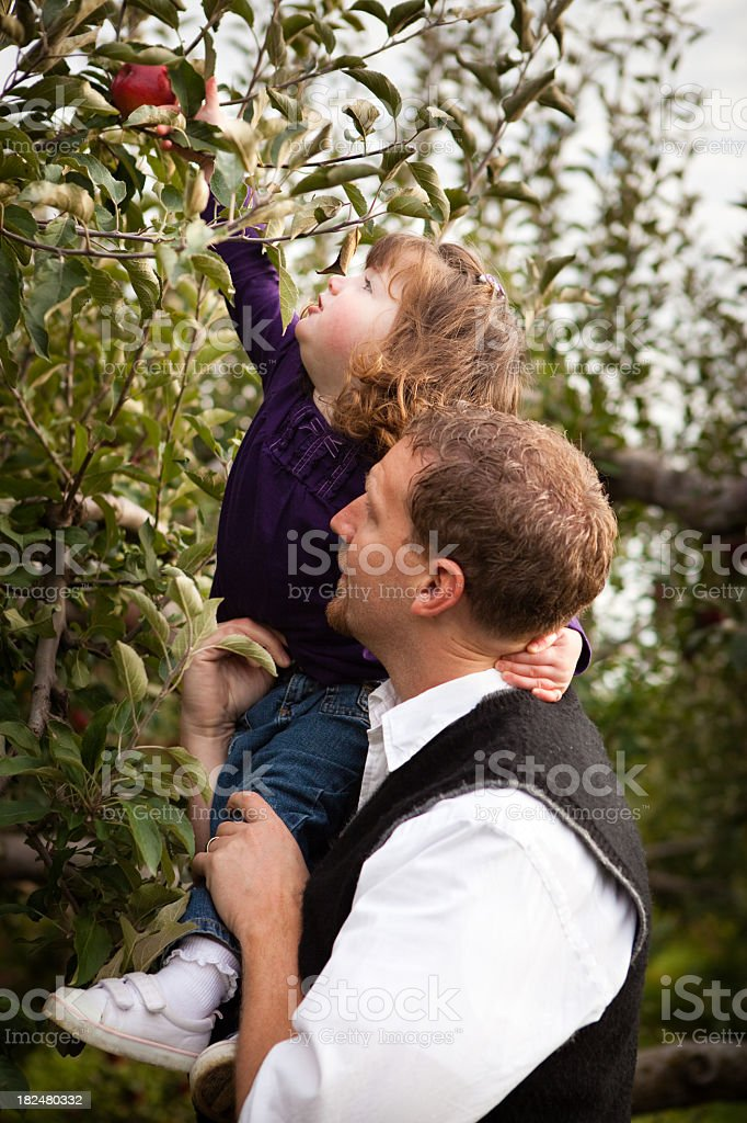 Father Helping Daughter Reach an Apple on Tree in Orchard royalty-free stock photo