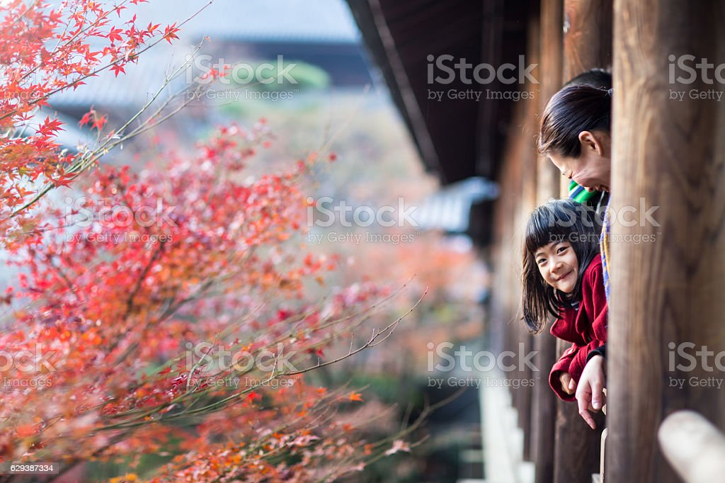 Father, mother and daughter at a temple enjoying autumn leaves stock photo