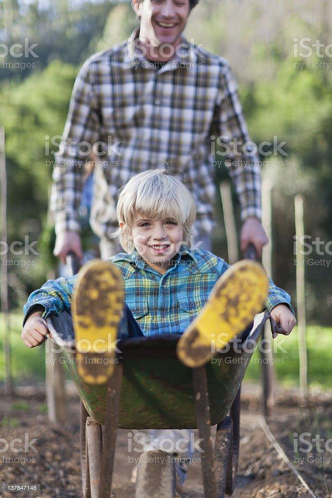 Father pushing son in wheelbarrow stock photo