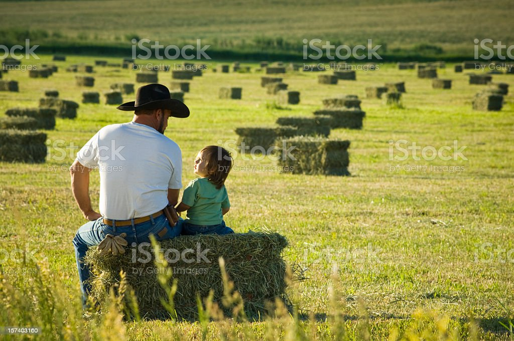 Image result for hay fields