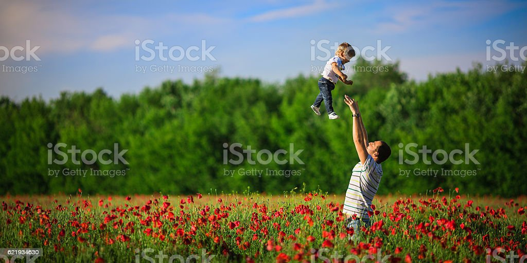 Father throws son in poppy field stock photo