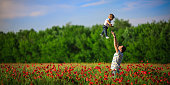 Father throws son in poppy field
