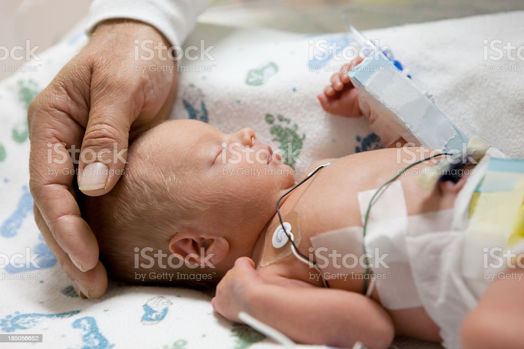 father touching head of a premature baby in incubator stock photo