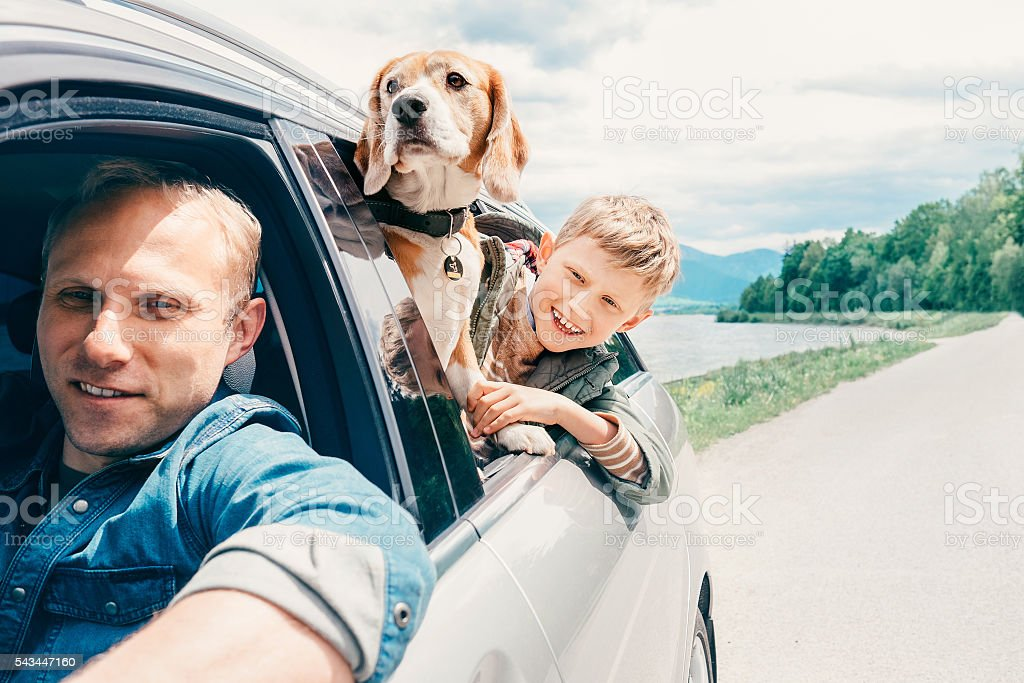 Father with son and dog look from the car window stock photo