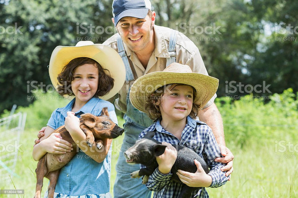Father with two children on family farm holding pigs stock photo