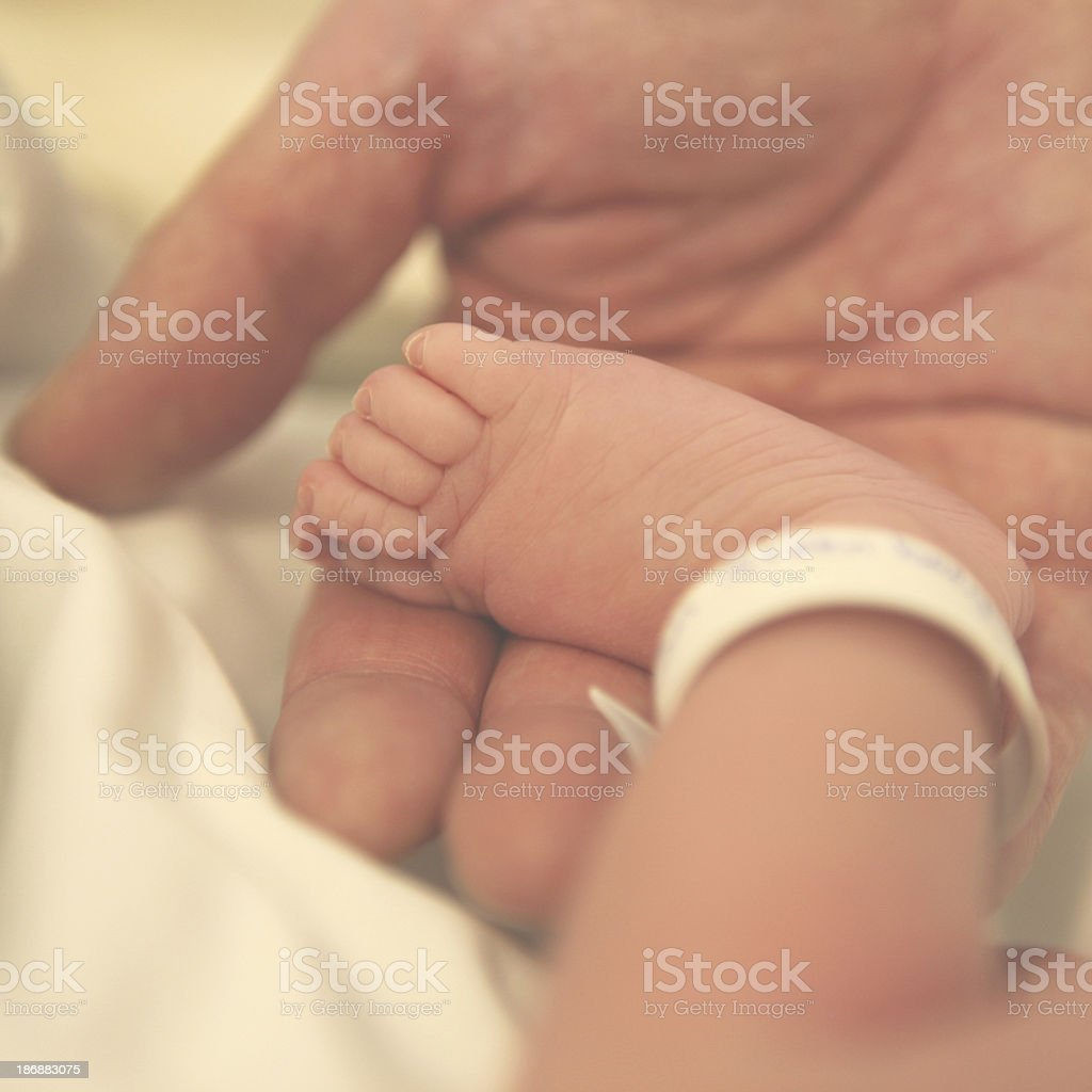 Father's Hand Holding Tiny Baby Foot of a Newborn royalty-free stock photo