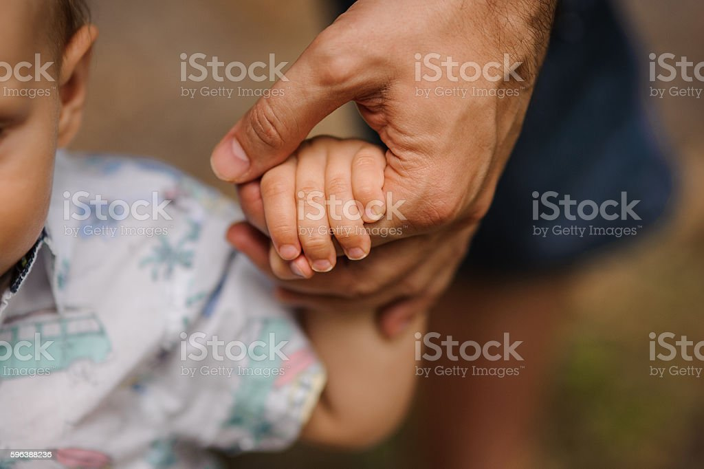 father's hand lead his child son in summer forest stock photo