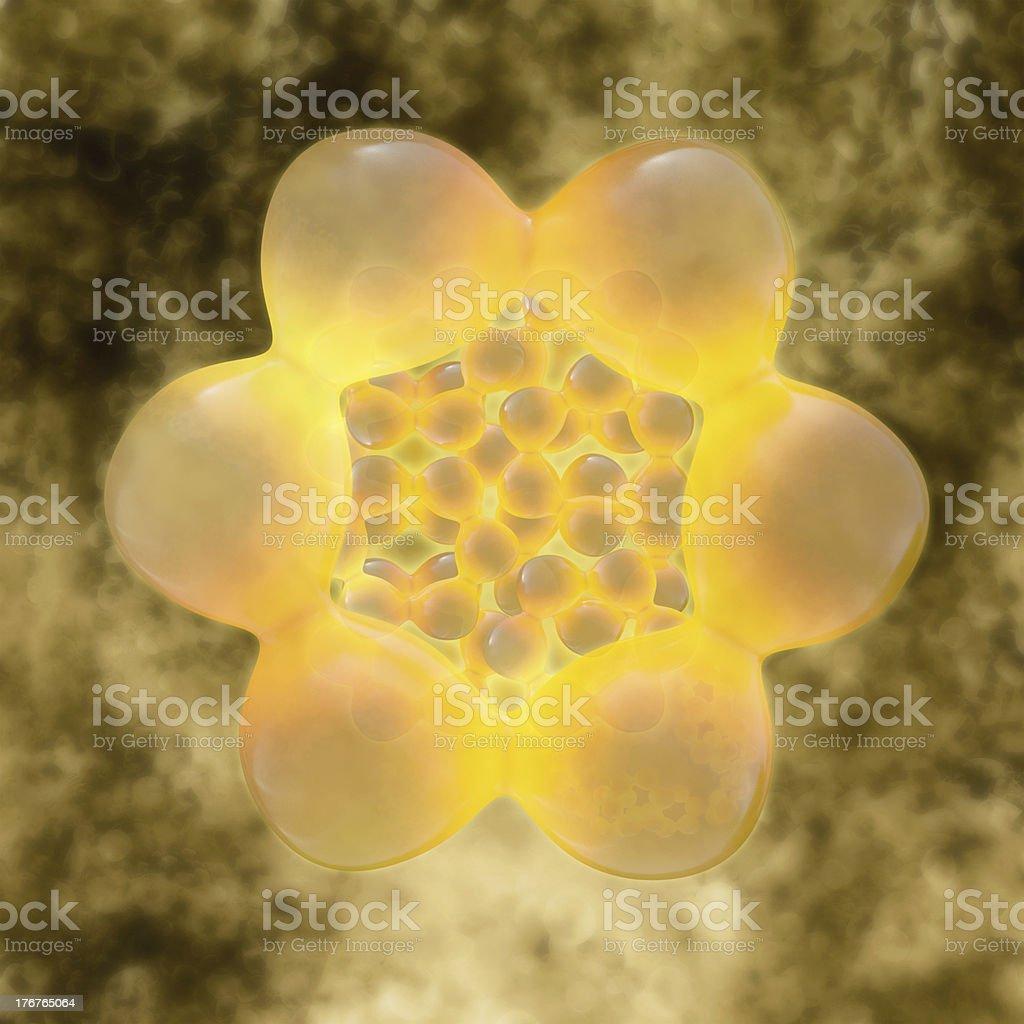 Fatt cells - 3d rendered illustration royalty-free stock photo