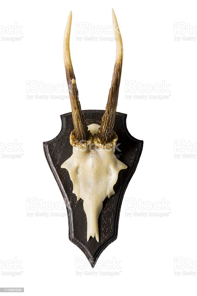 Faux Antlers royalty-free stock photo