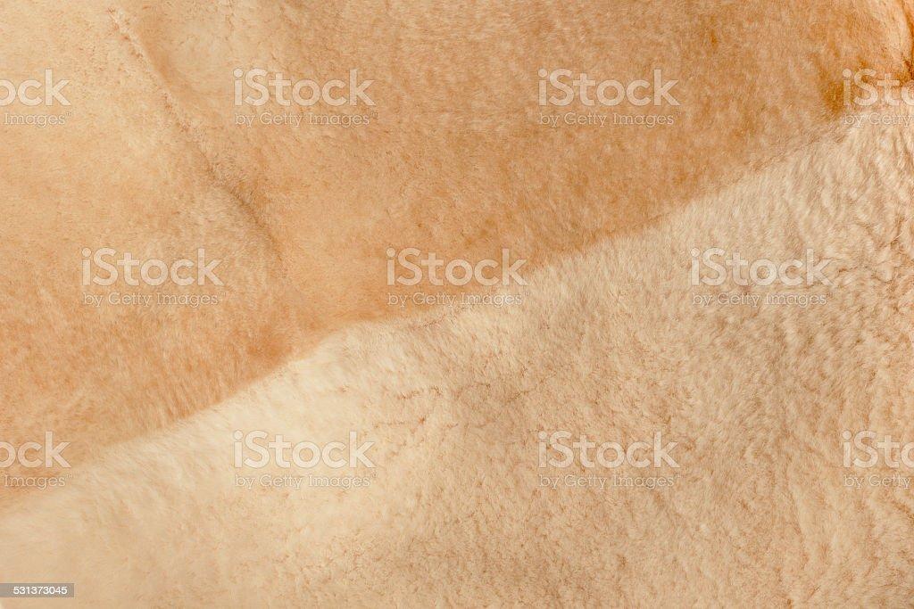 faux fur stock photo