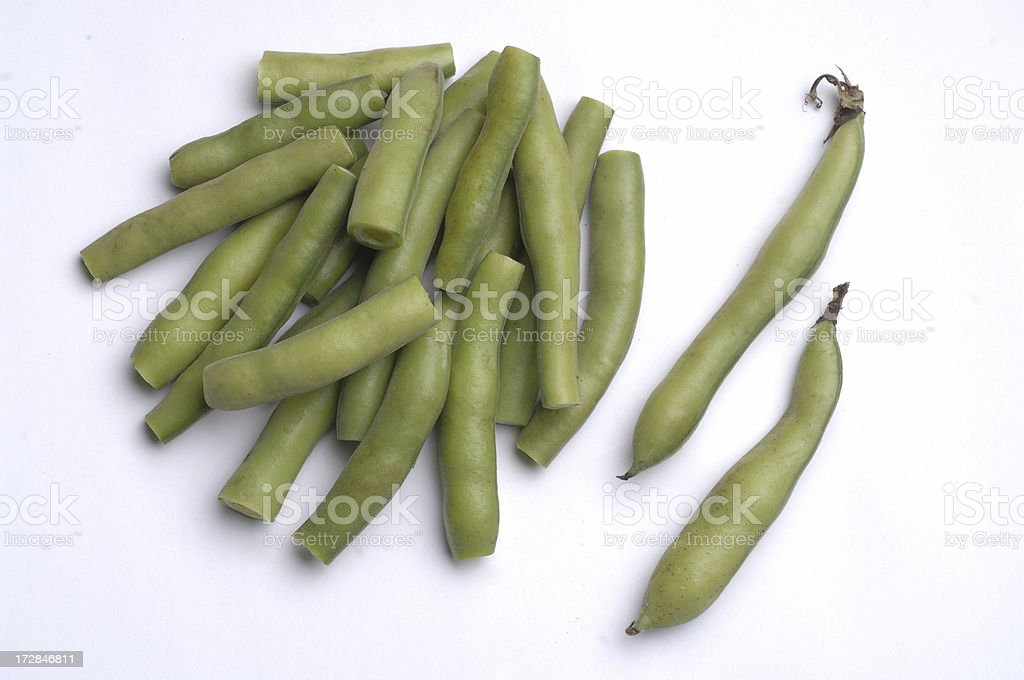 fava bean royalty-free stock photo