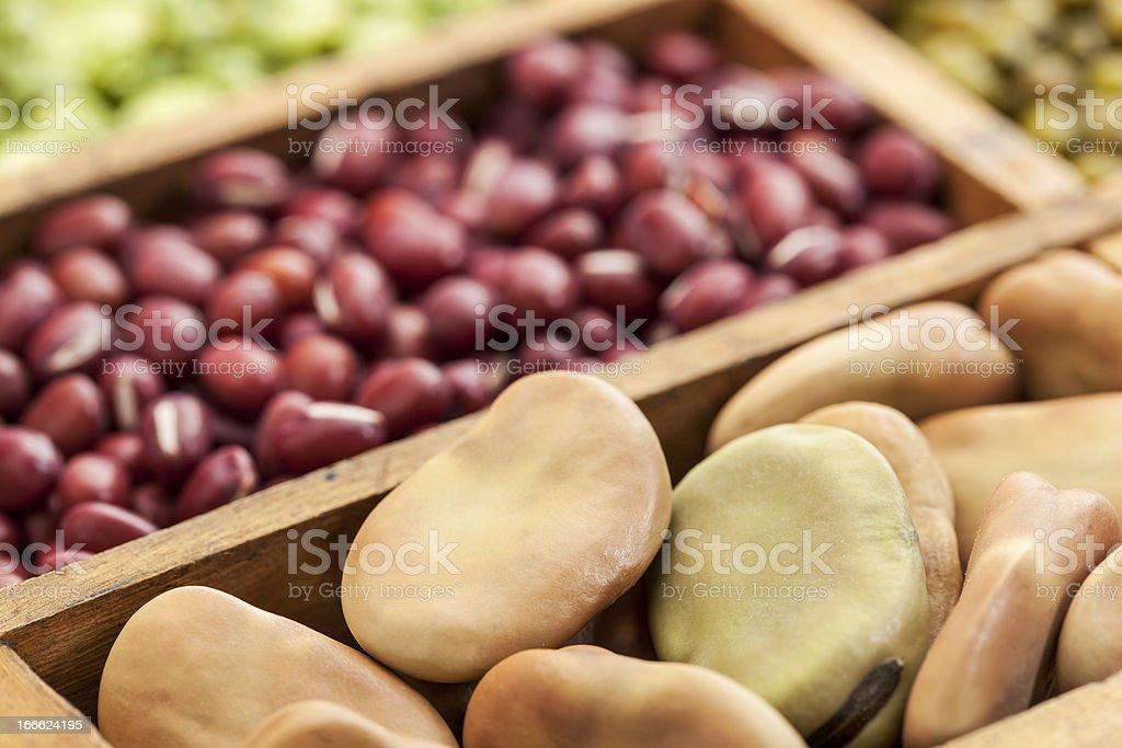 fava (broad) beans stock photo