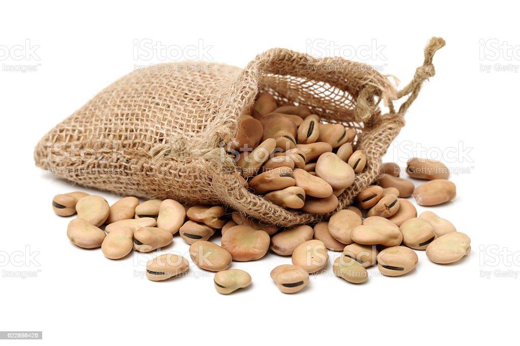 Fava beans,Vicia faba stock photo