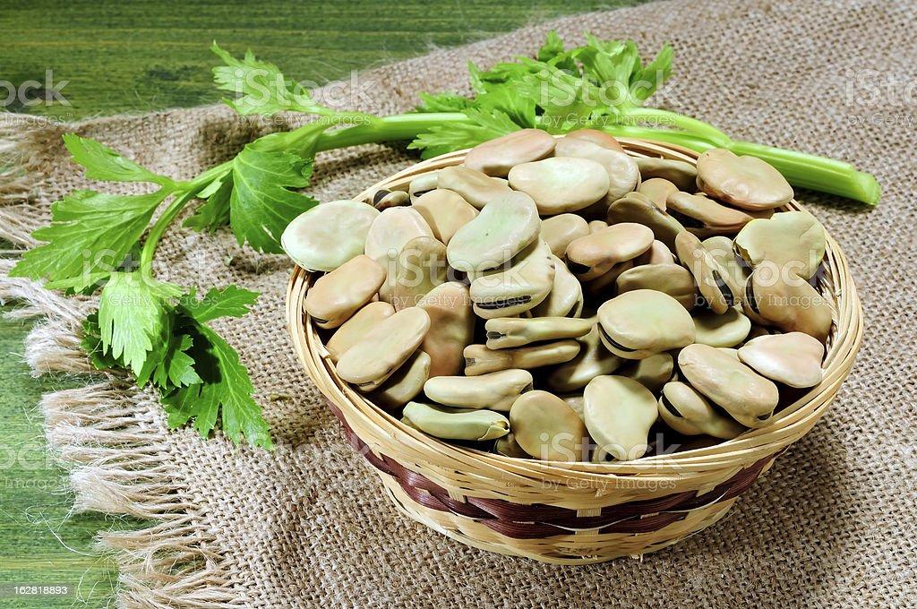 Fava broad beans royalty-free stock photo